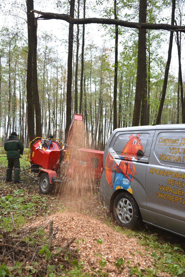 Просто красивый кадр работы измельчителя веток в лесу)
